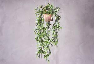 Bilde av Hengeplante D H:75cm